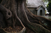 Glebe Cemetery Gatehouse