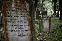 Cemetery at Glebe - Sydney