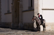 Horse Guard, St. Mark's Church, Zagreb