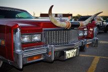 Cadillac, Fireball Run, Gallup