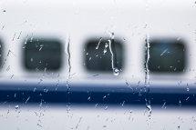 Shinkansen Window