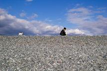 Dog and Owner - Numazu Beach