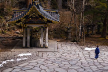 Passerby - Nikko
