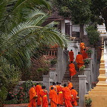 Back to the monastery