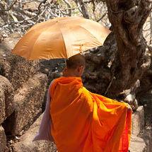 Phu monk