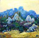 Boquer Valley Vision