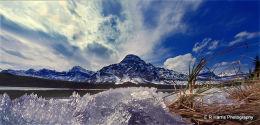 Bow  River lake BC