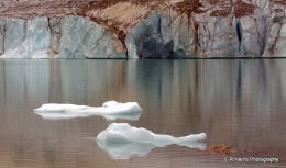 Iceburgs Angel Glacia BC