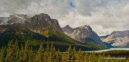 BC Landscape