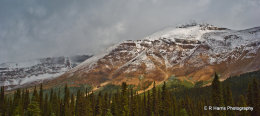 Snowcapped BC