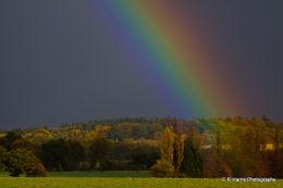 Rainbow Ipsden Oxon
