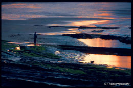 Seahouses shore Northumbria