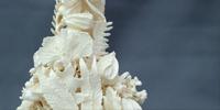 Vicki Sutherland Ceramics