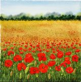 Poppies Galore (SOLD)