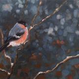 'Bullfinch'