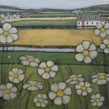 Galloway Daisies - SOLD