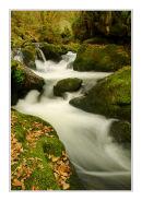 Golitha Falls, Bodmin Moor