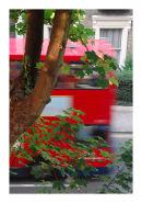 London-Bus-St-Paul's-Road-WEB