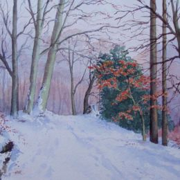 """Snow In The Limb Valley -Sheffield"""