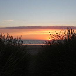 Sunrise through the marram grass, Ross Links, Northumbria