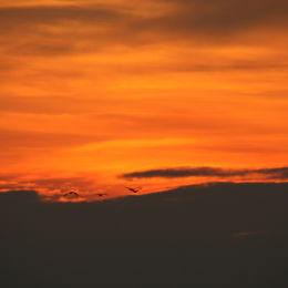Holkham Sunset, North Norfolk