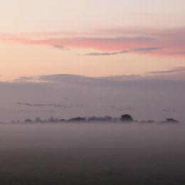 Holkham winter dusk, North Norfolk