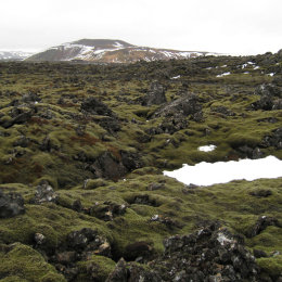 View across lava fields, Blue Lagoon, Iceland