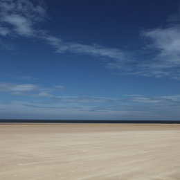 Holkham Beech, North Norfolk
