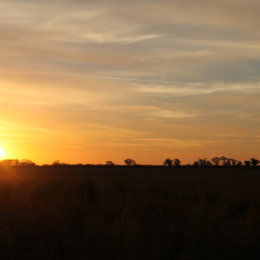 Sunset across fields, Thornham, North Norfolk