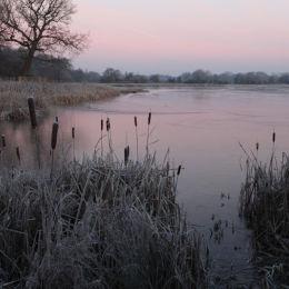 Frosty morning, Marsh Lane NR, W Mids