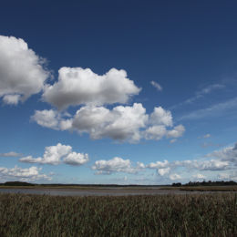 Snape Maltings to Iken, Suffolk