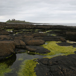 Dunstanburgh Castle, Craster, Northumbria