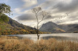 Just Surviving Buttermere