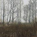 The Woodland Edge