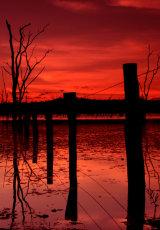 MH0055 Warruma swamp fence RS