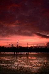 MH0061 Warruma Swamp Sunset RS