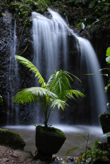 MH0069 Waterfall RS