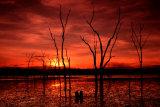 MH0073 Warruma Swamp RS
