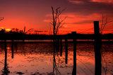 MH0079 Warruma Swamp Fence RS
