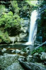 MH0153 Snug Falls