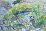 Lily-Pond, Hillway
