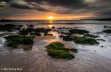 Coldingham Bay sunrise