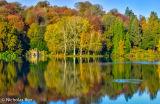Autumn colours on Stourhead Lake