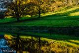 Stourhead lakes water reflection