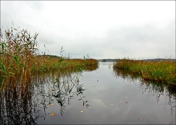Huosiosjoki