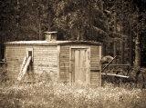 Abandoned gypsy wagon