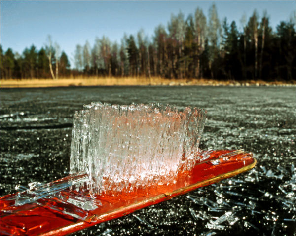 Spring Ice on Oar