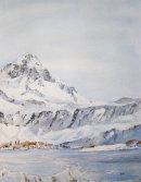 South Georgia Winter