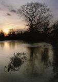Galleyhill Pond