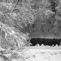 Snow - Riggfoot